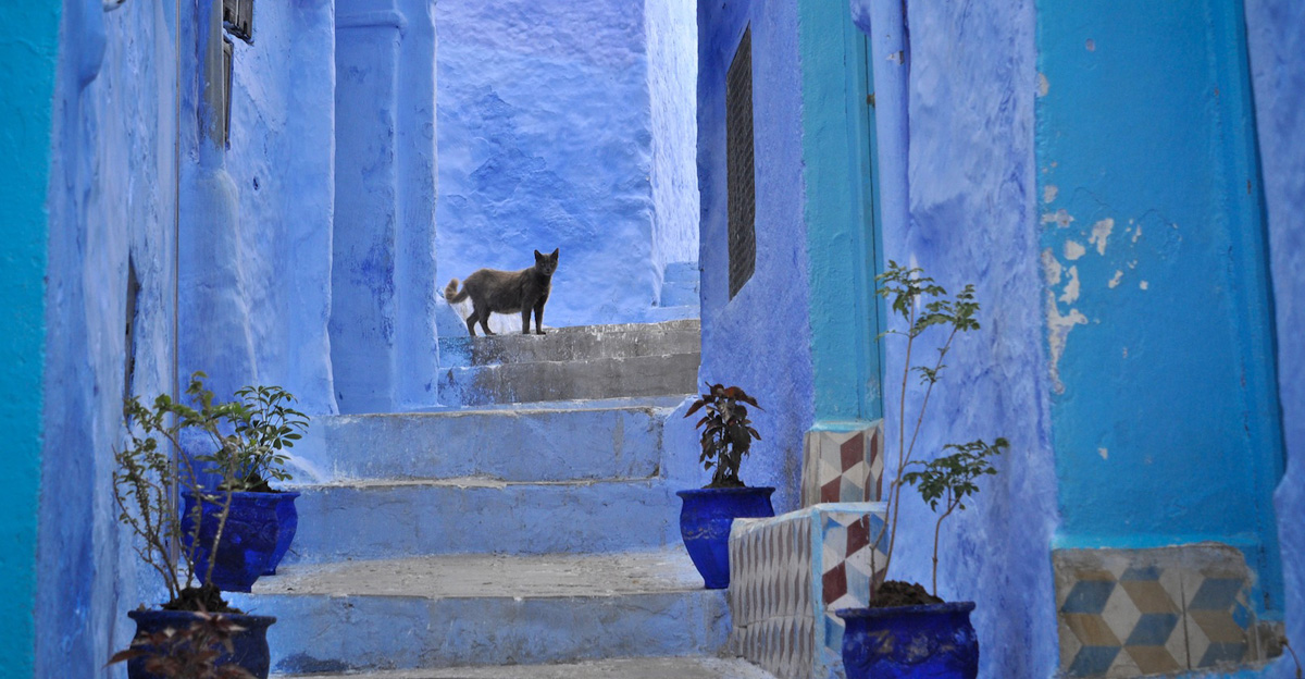 Chefchaouen, Morocco - by Mário Tomé