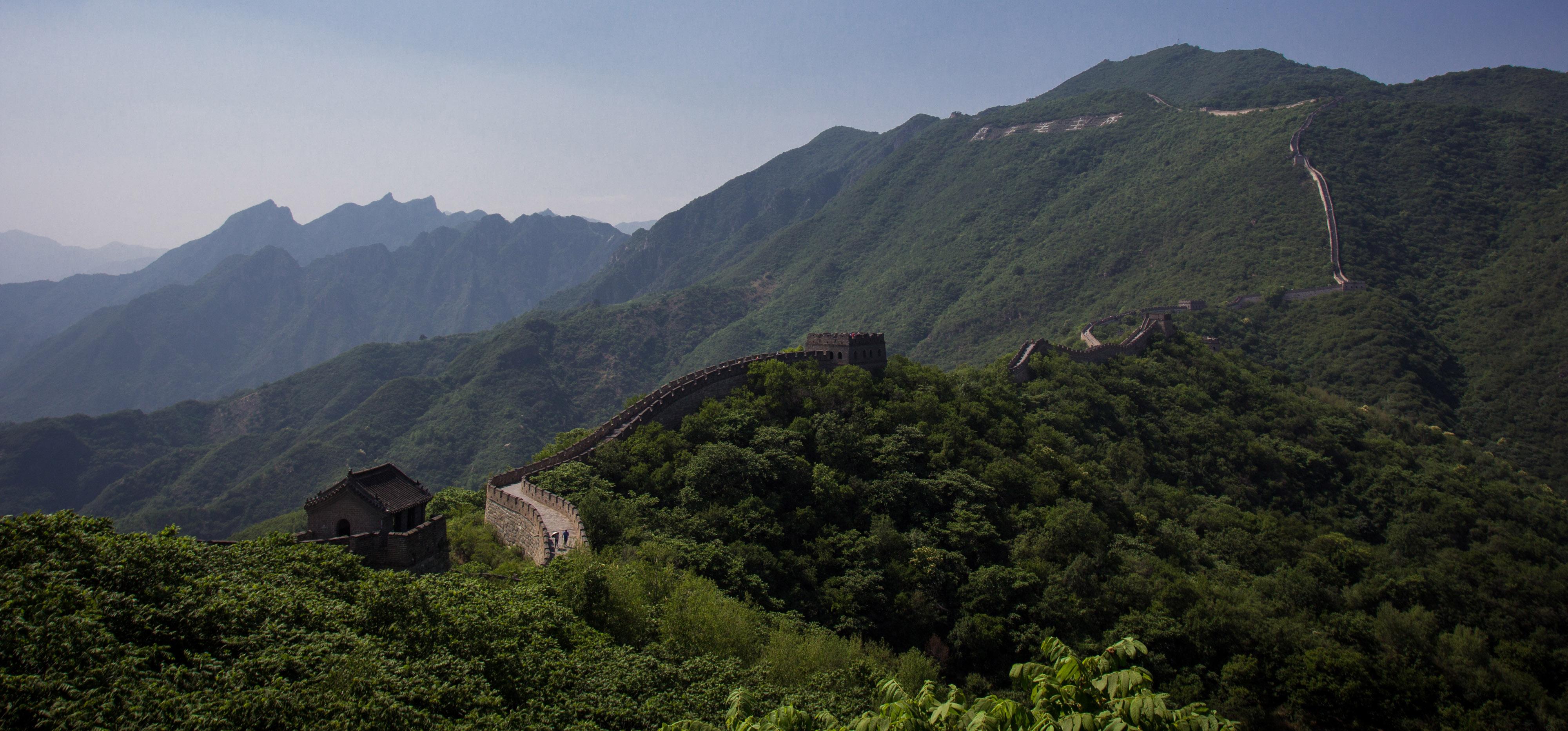 China - Tony Bertolino