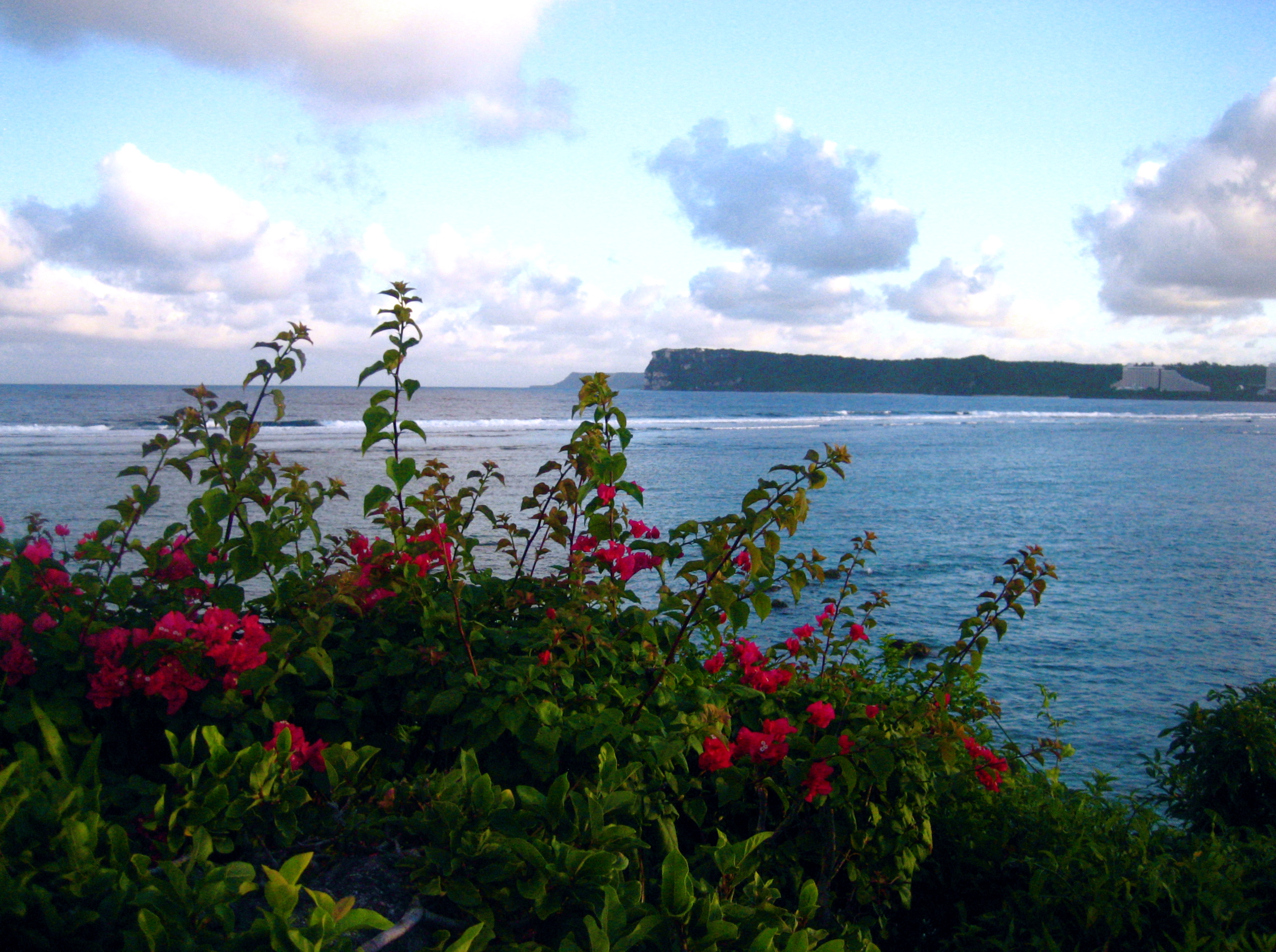 Coastal view in Micronesia - by Molly Holzschlag