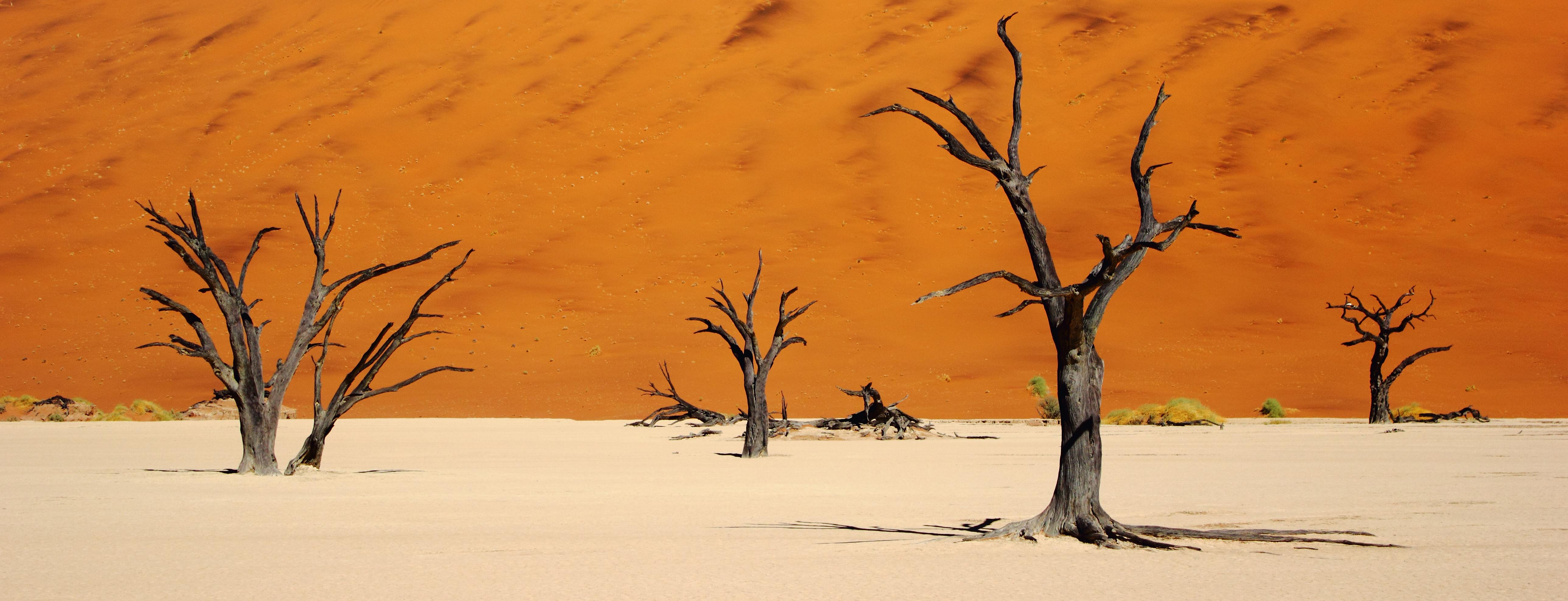 Deadvlei, Namibia - by Lorenzo Ridi