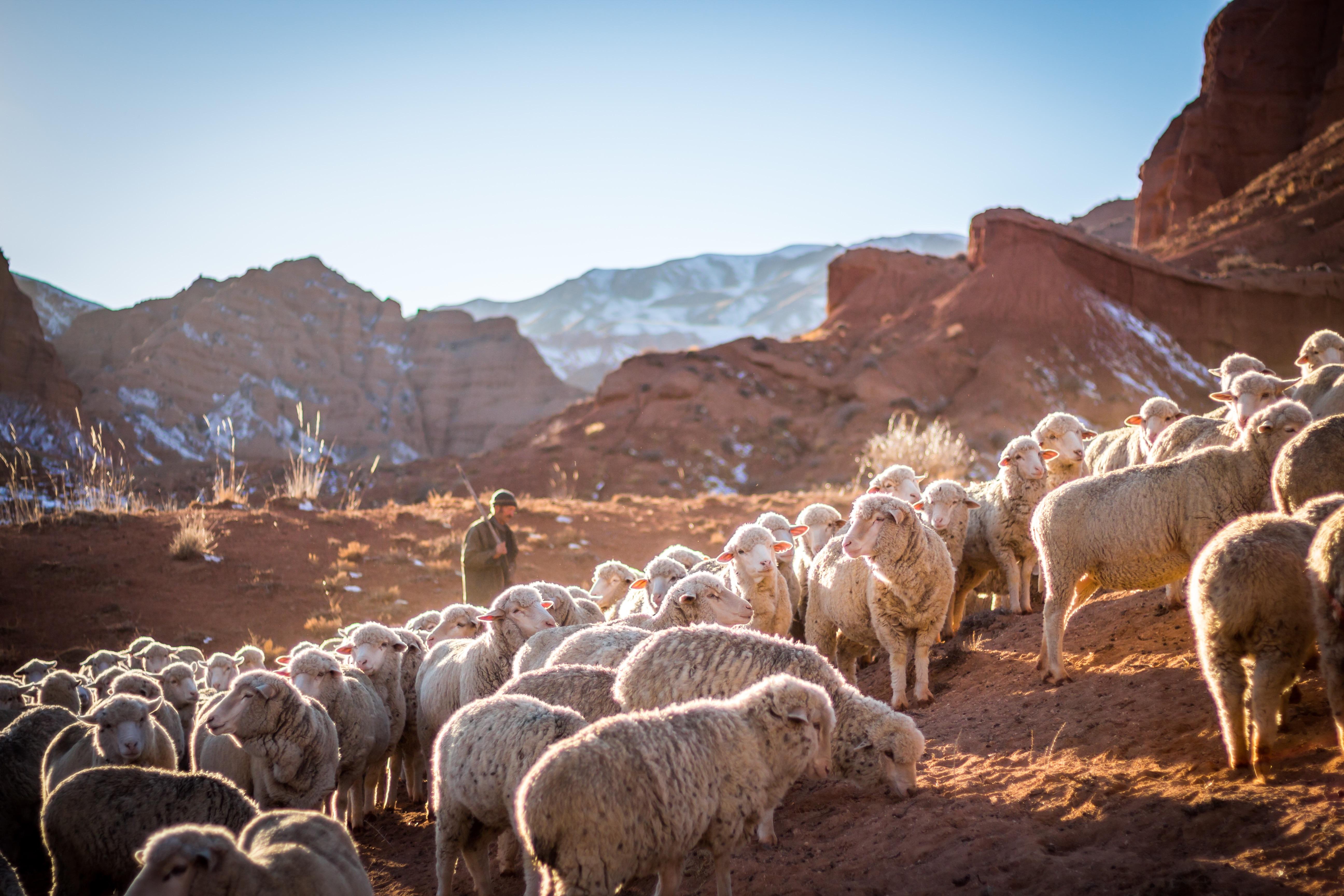 Gebiet Tschüi, Kyrgyzstan - Patrick Schneider