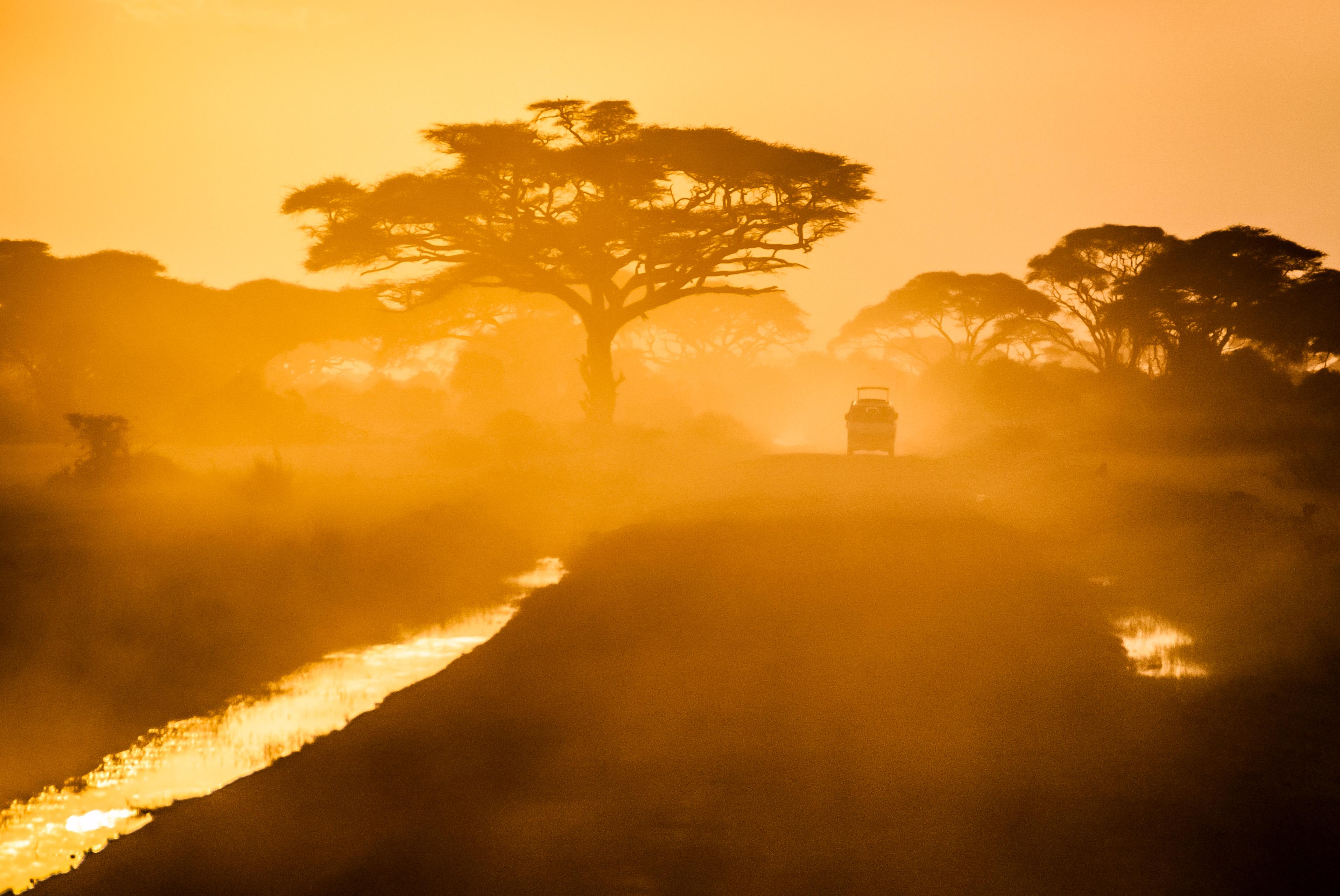 Каджиадо, Кения, Кения - Sergey Pesterev