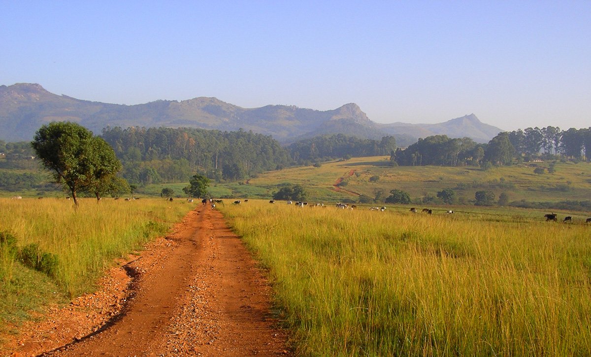 Mlilwane wildlife sanctuary, Swaziland - by delayed gratification
