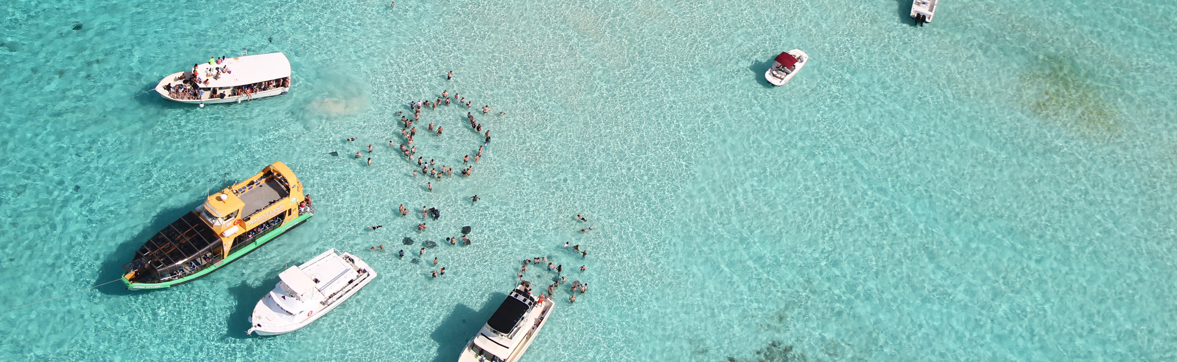 Stingrays in shallow water in Cayman Islands - by Katie Thebeau