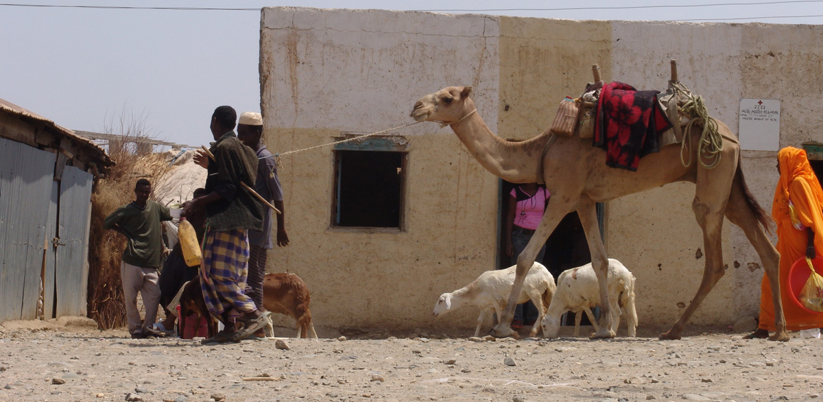 Village life in southern Eritrea - by Charles Roffey