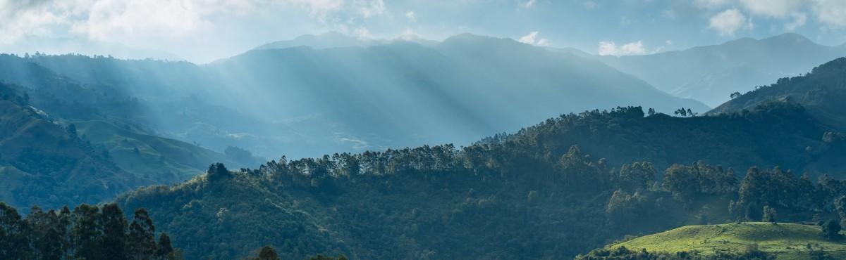 La Serrana, Colombia - Dan Gold