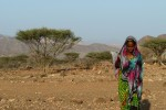 A lady near Randa, Djibouti - by Phil2No