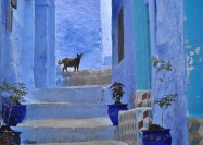 Chefchaouen, Morocco - by Mário Tomé