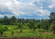 Countryside in Côte d'Ivoire - by jbdodane