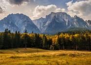 Deer's Valley, Romania - by Sorin Mutu