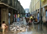 Fish market by Bay Of Bengal, Bangladesh - by Aftab Uzzaman
