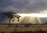 Pray for Eastern Africa
