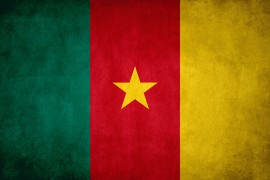 Cameroonian flag