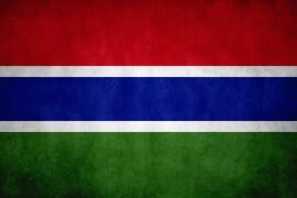 Gambian flag
